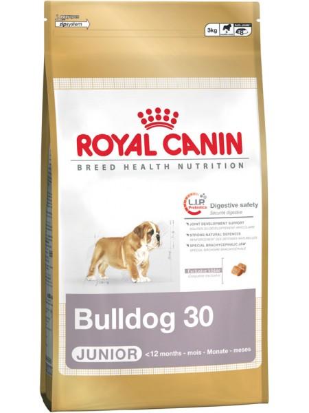 Bulldog Junior (12кг.)