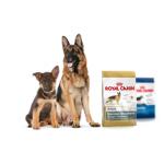 Royal Canin для определенных пород