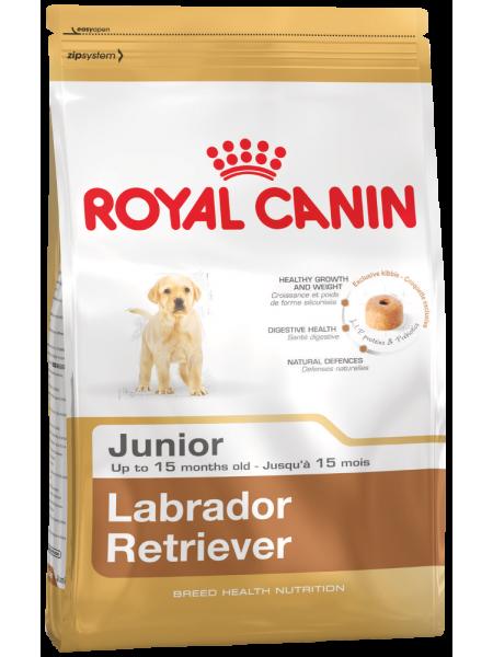 Labrador Retriever Junior (12кг.)